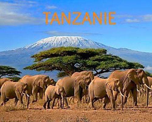 Carnets de voyage en Tanzanie et repas africain