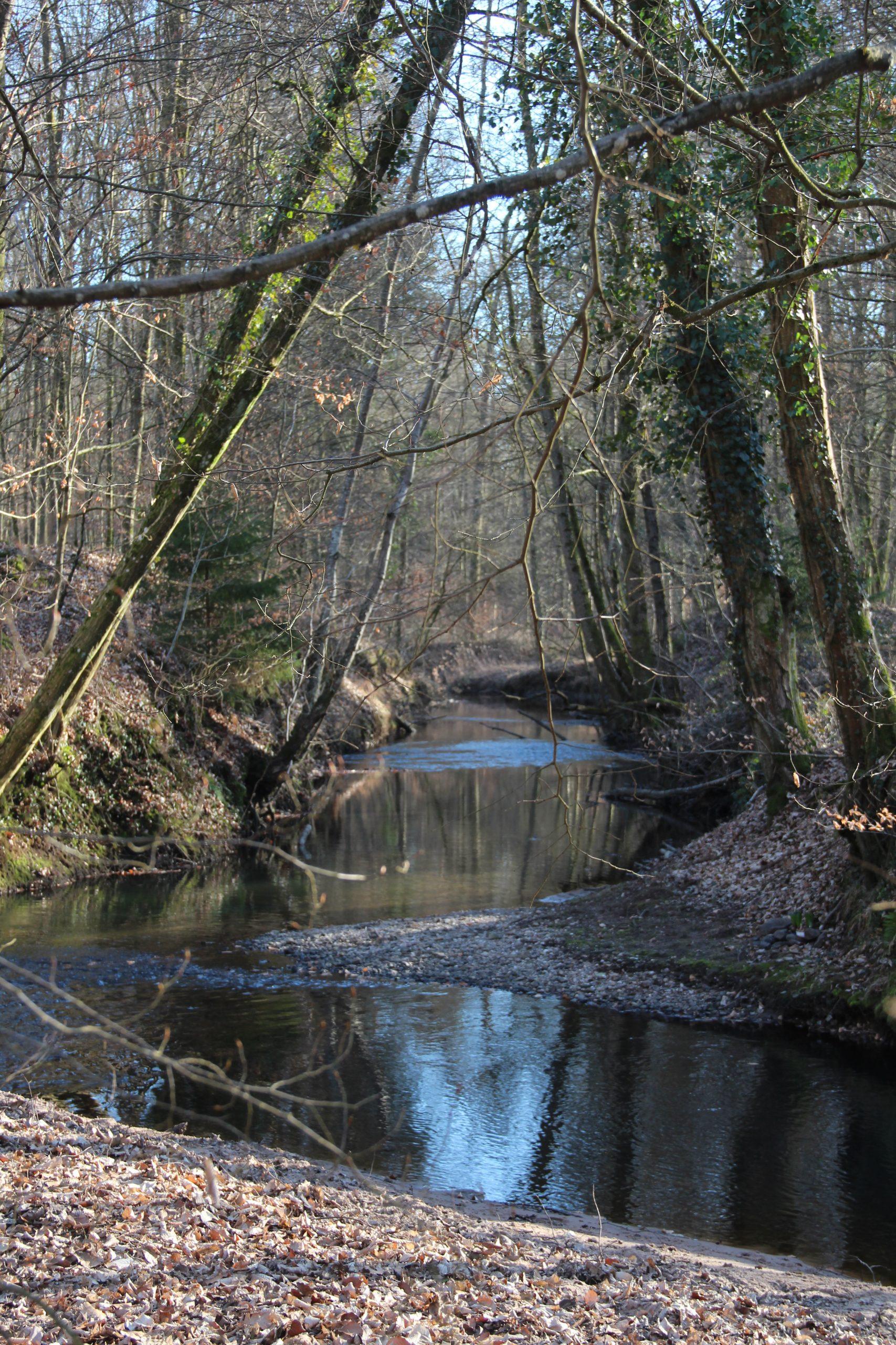 La rivière généreuse