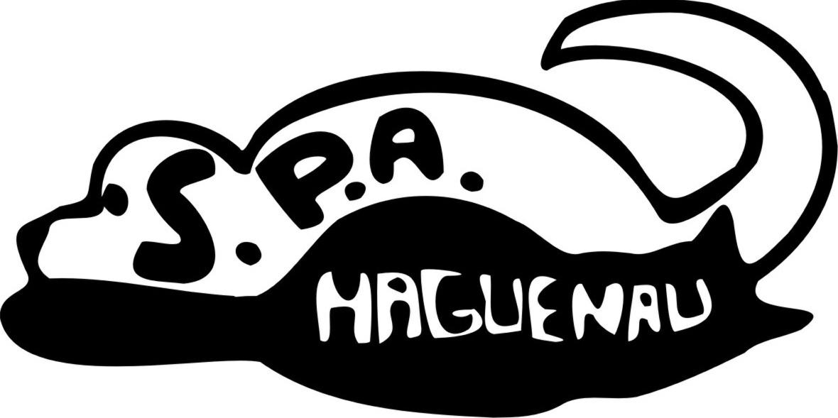 Bourse aux livres de la SPA de Haguenau