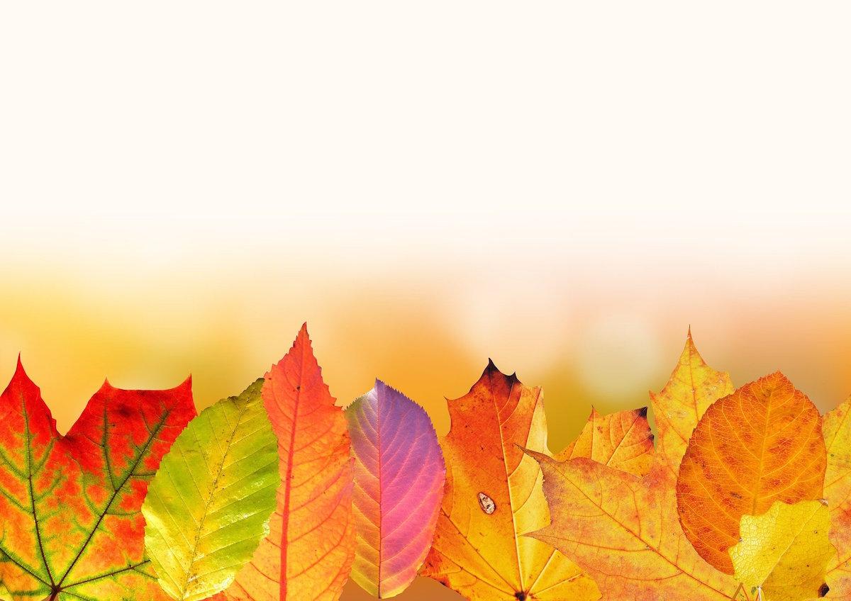Atelier bricolage d\'automne