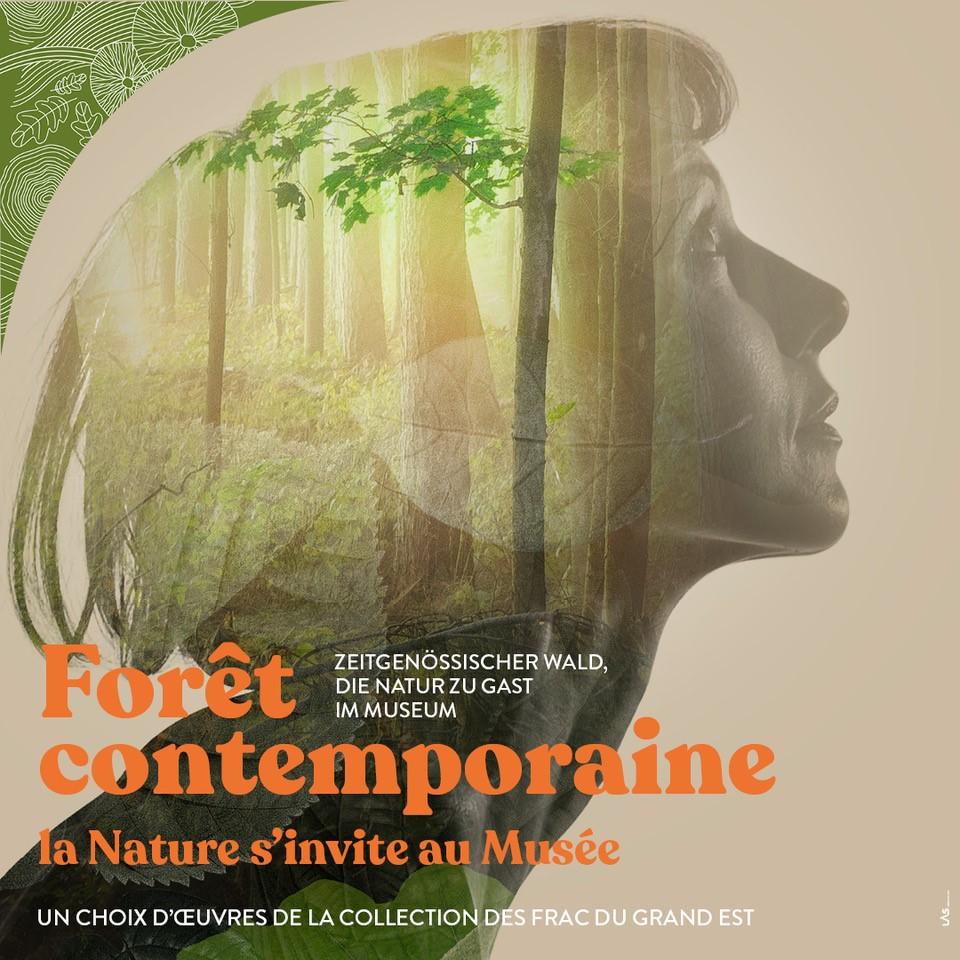 """La rentrée au Musée, activités autour de l'exposition """"Forêt contemporaine"""""""